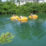 Pedal Boats - Recreation and Services - Windmill Point Park